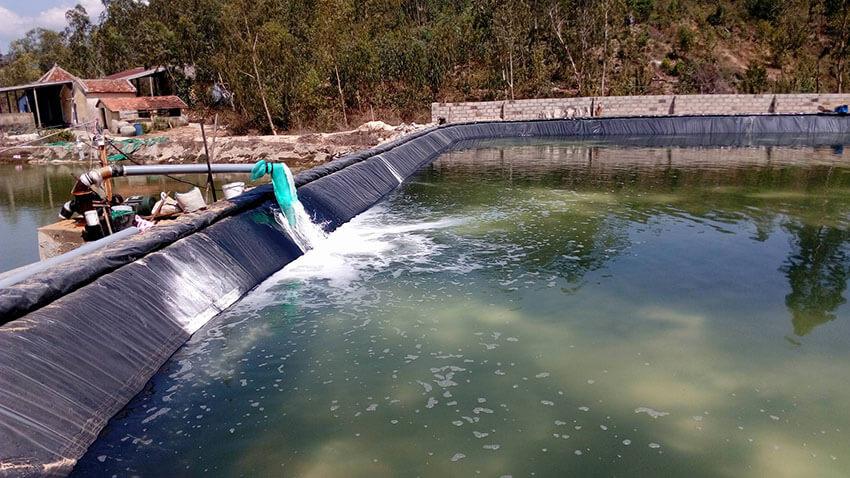 Hóa chất xử lý nước thải ngành thủy sản